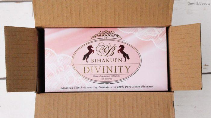 bihakuen-divinity2-e1483604557395 - image