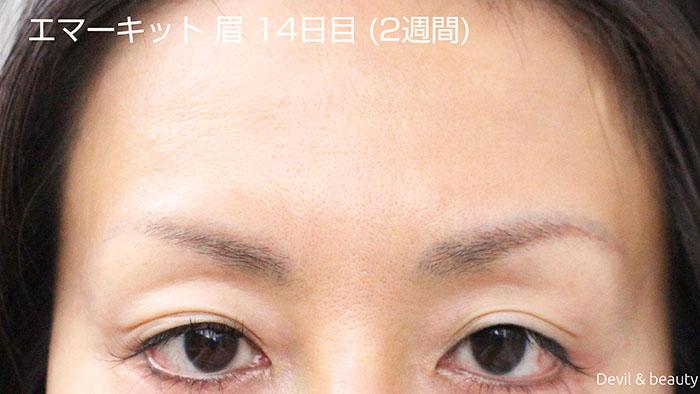 emaked-eyeblow-day14-1 - image