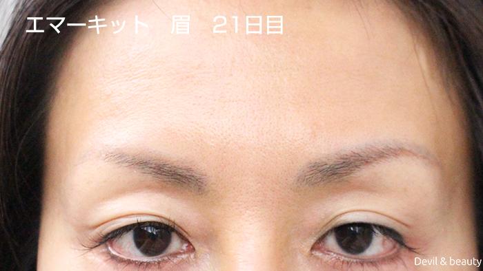 emaked-eyeblow-day21-1 - image