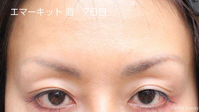 emaked-eyeblow-day7-1 - image