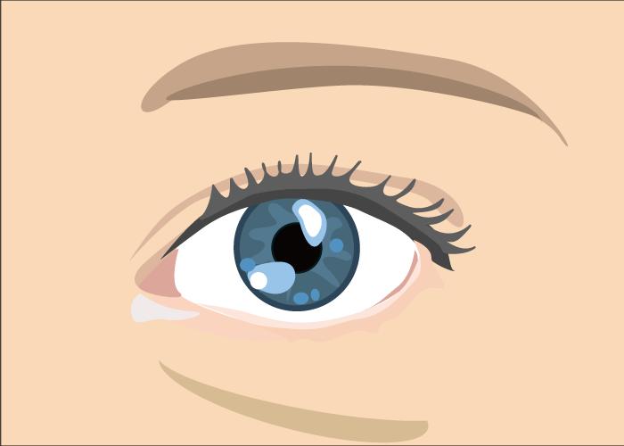 eye4 - image