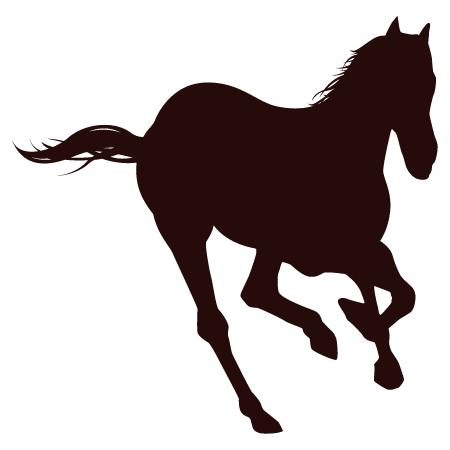 horse - image