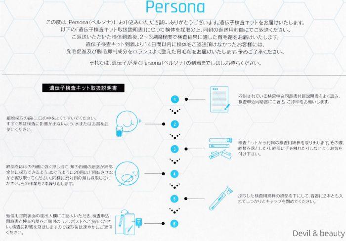 persona10-e1497028423224 - image