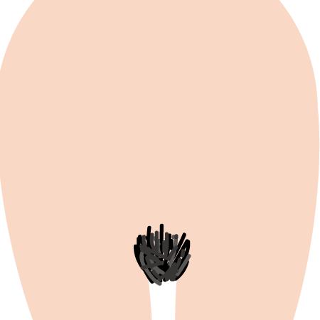vio1-1 - image