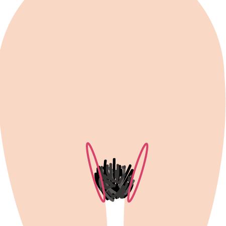 vio1-2 - image